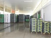 magazzino di lavorazione 2